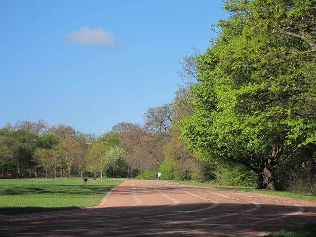 Regent's Park es una atracción