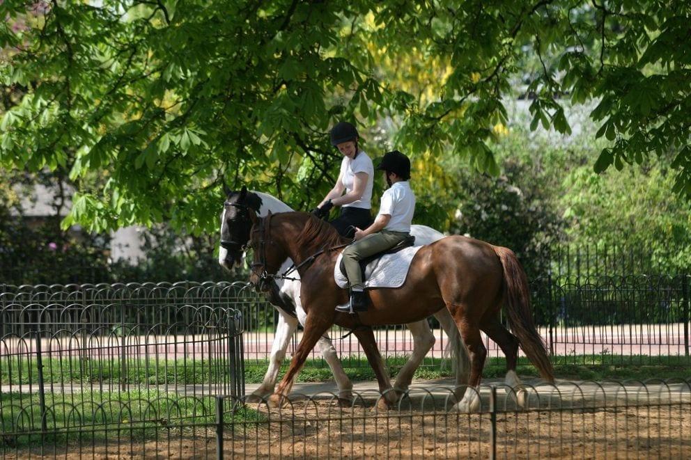 hyde park de paseo, unido al Kensington Gardens