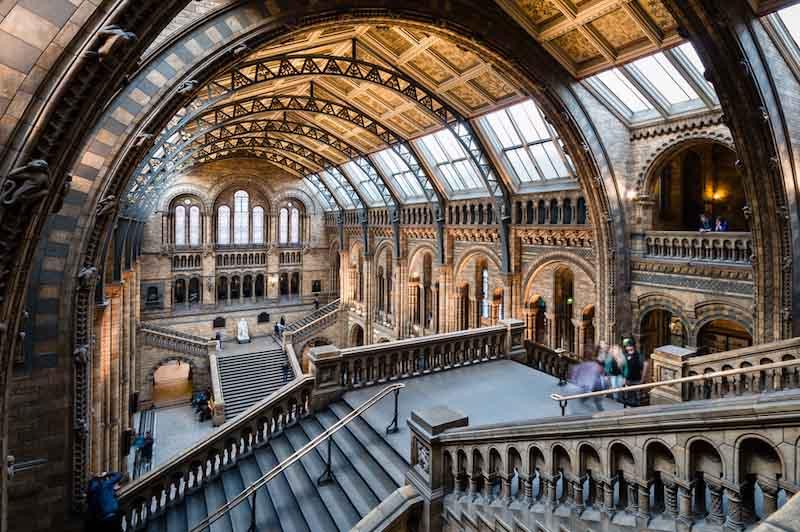 Audioguía Museo de historia natural de Londres