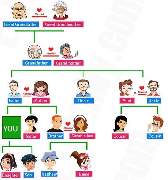 La Familia en Inglés - Vocabulario (Guía de Estudio 2018)