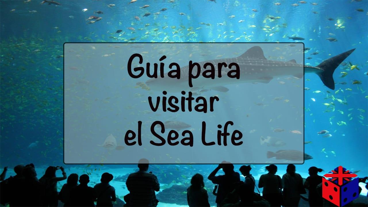 Acuario de Londres: Sea Life